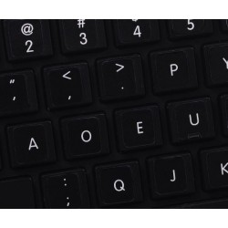 Apple Dvorak non-transparent keyboard sticker 11x13