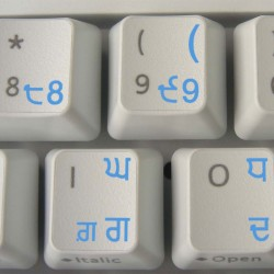 Punjabi transparent...