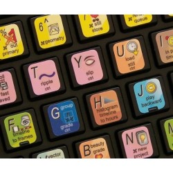 APPLE COLOR keyboard sticker