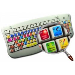 Corel Painter keyboard sticker