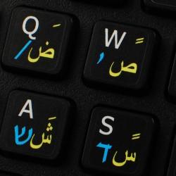 Hebrew Arabic English non...